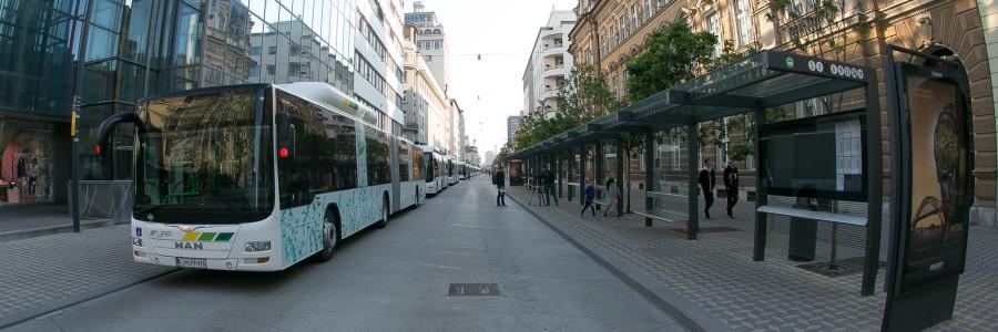 A Lubiana, 30 moderni autobus snodati MAN Lion's City CNG con motore a gas hanno recentemente sostituito i precedenti modelli singoli.