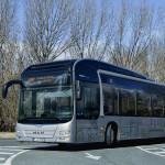 P_Bus_EOT_EMT_01