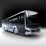 P_Bus_EOT_NewLionsCity-02