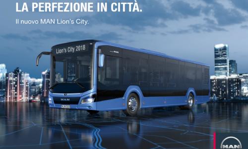 Lion's City